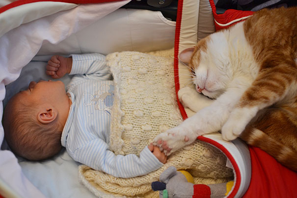 kids-with-cats-411__605